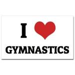 Key Steps Gymnastics 2015
