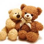 KS1 Teddy bears' Festival